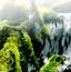 热带雨林拼图