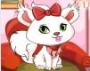 漂亮的小猫猫
