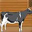 农场奶牛丢失案
