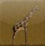 长颈鹿地下冒险