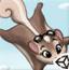 飞翔松鼠大冒险