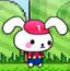 兔宝的马里奥世界