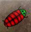 勇敢的小虫子