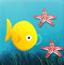 小鱼吃海星