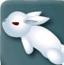 兔子跳南瓜