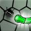 捕虫小绿蛇