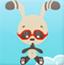 兔年节节高