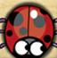 焦虑的瓢虫3