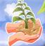 沙漠养植物