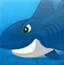 海豹躲鲨鱼