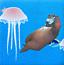 熊出没海底捞贝壳