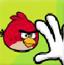 抓愤怒的小鸟