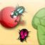 养甲虫赚钱