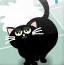小黑猫厨房探险