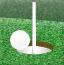 奇趣高尔夫2