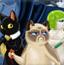 猫猫特工战