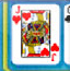 野生扑克单人纸牌