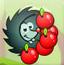 刺猬收苹果
