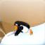 企鹅坚守阵地