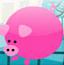 猪猪找宝藏