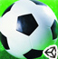 3D绿荫足球