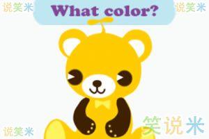 动物与颜色