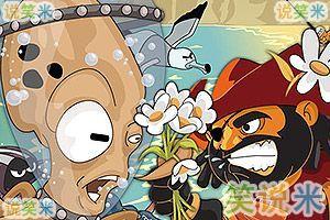 海盗爱雏菊