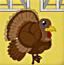 感恩节小火鸡