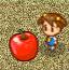 大苹果农场