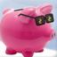 小猪运输金币2