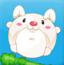 胖胖兔吃南瓜