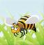 蜜蜂数学家