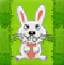 短腿的兔子