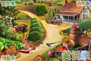雷叔叔的农场