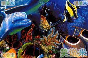 海底梦幻逃生