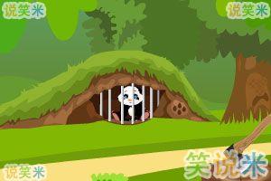 小熊猫逃出森林