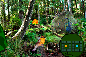 逃离金孔雀森林