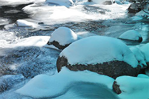企鹅冰洞逃生