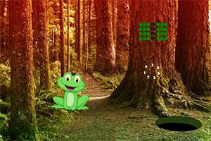 逃离危险深处丛林