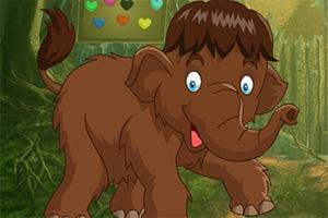 救援棕色大象