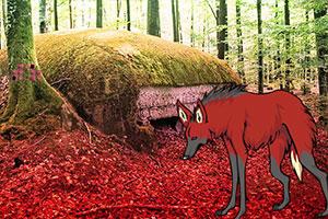 红狼森林逃脱