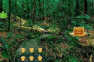 逃离城市森林之旅