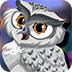 救援精灵猫头鹰