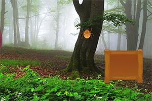 逃离树叶林