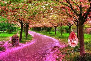 梦幻紫森林逃脱