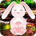 救援死而复生的兔子